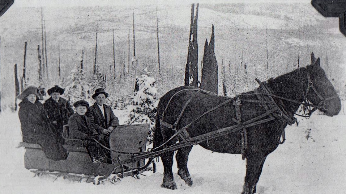Erik Erikson family with sleigh