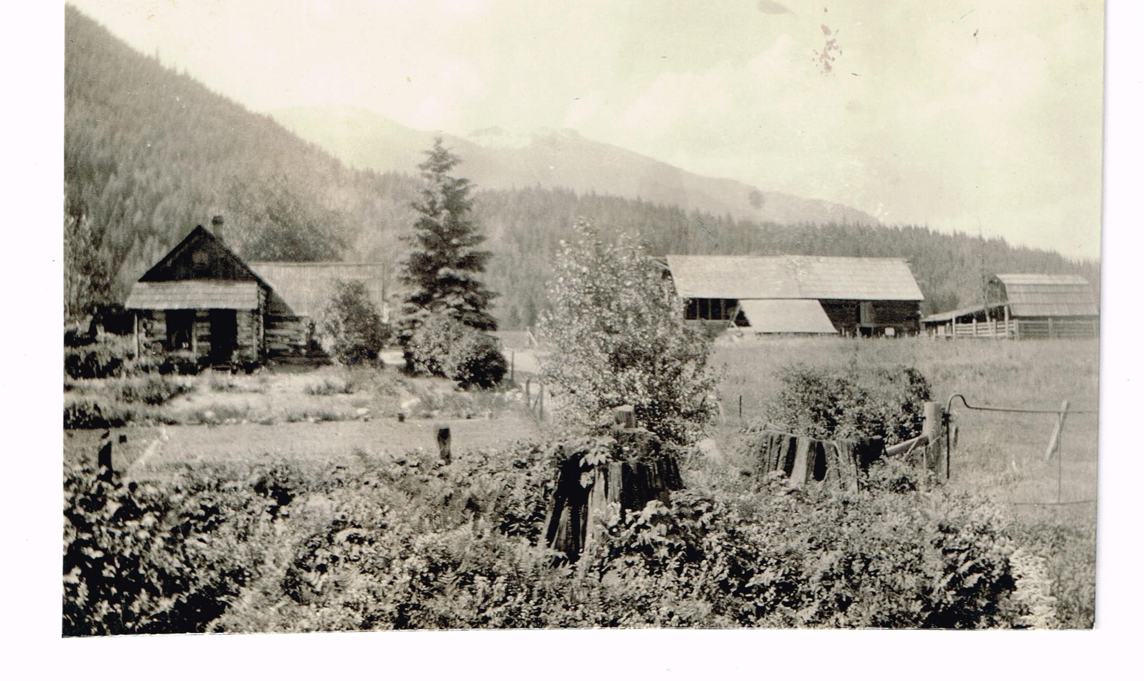 boyes family farm