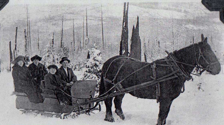 Erik Erikson family with sleigh