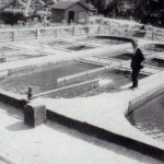 Taft Fish Hatchery